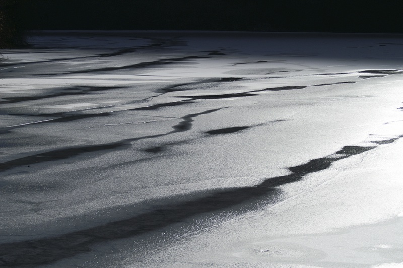 the-lake.jpeg