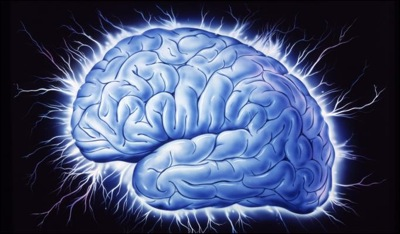 frazzled_brain
